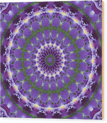 Iris Kaleidoscope  Wood Print by Denise Beverly