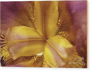 Iris Kaleidoscope I Wood Print by Terri Thompson