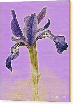 Iris On Lilac Wood Print