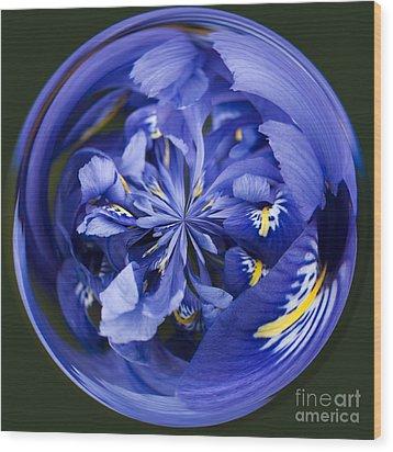 Iris Orb Wood Print by Anne Gilbert
