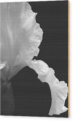 Iris Outline Wood Print