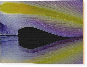 Iris Petal Reflected Wood Print by Don Schwartz