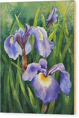 Iris Setosa Alaska Wood Print