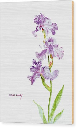 Wood Print featuring the painting Iris Trio by Rachel Lowry