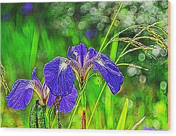 Wood Print featuring the photograph Irises by Cathy Mahnke