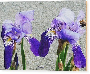 Wood Print featuring the photograph Irises by Jasna Dragun
