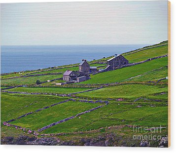 Irish Farm 1 Wood Print