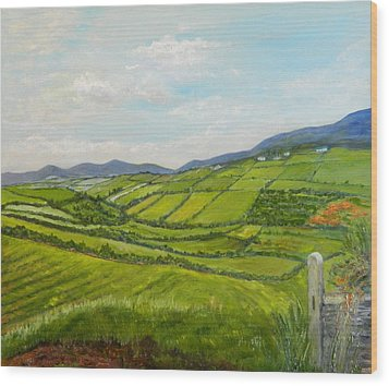 Irish Fields - Landscape Wood Print