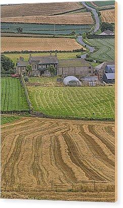 Wood Print featuring the photograph Irish Mosaic by Gary Hall