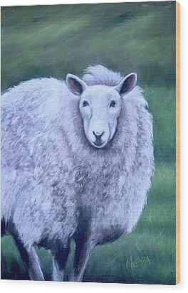 Wood Print featuring the painting Irish Sheep Portrait by Melinda Saminski