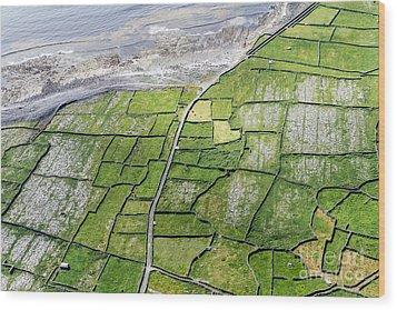 Irish Stone Walls Wood Print