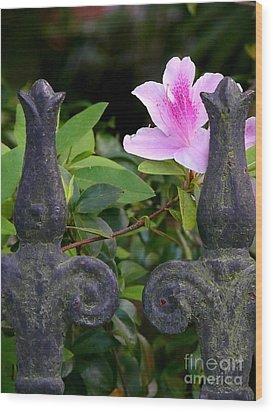 Iron Fence With Azalea Wood Print
