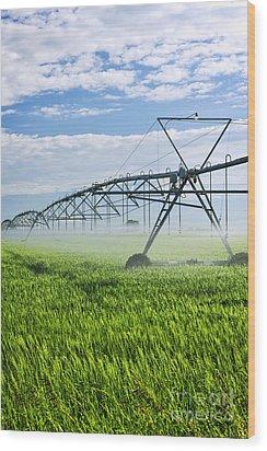 Irrigation Equipment On Farm Field Wood Print by Elena Elisseeva