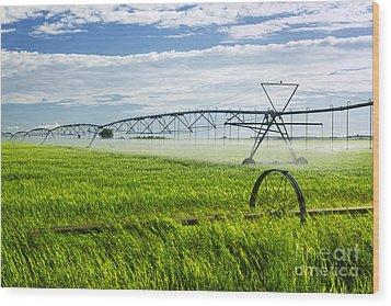 Irrigation On Saskatchewan Farm Wood Print by Elena Elisseeva