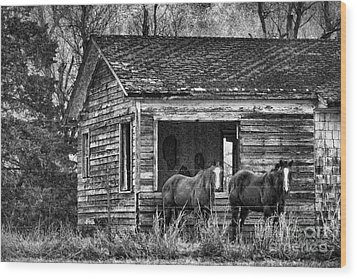 Is This Our Barn Wood Print by Betty LaRue
