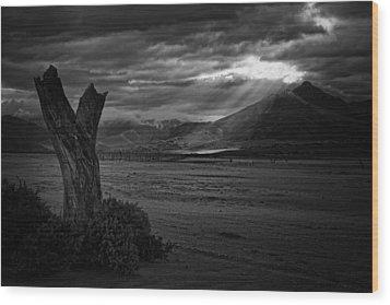 Isabella Storm Wood Print