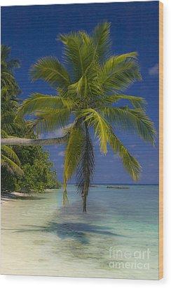 Island Dream Wood Print