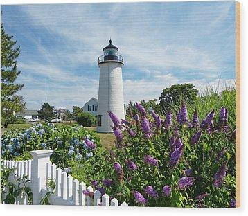 Island Light Wood Print by Elaine Franklin