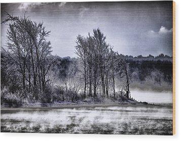 Island Of Lost Souls Wood Print