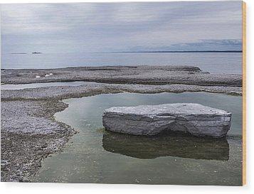 Wood Print featuring the photograph Island On Island by Arkady Kunysz