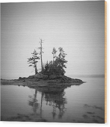 Island Wood Print by Patrick Downey