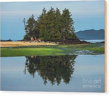 Island Reflection Wood Print by Robert Bales