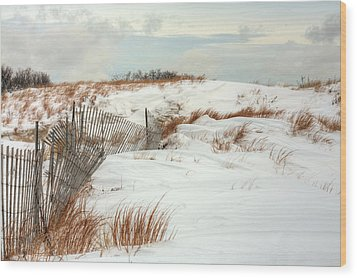 Island Snow Wood Print by JC Findley