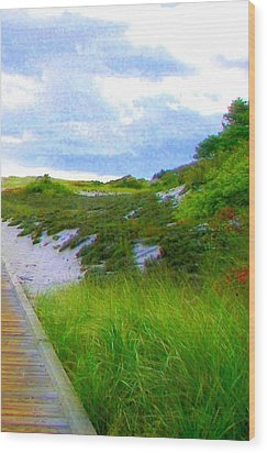 Island State Park Boardwalk Wood Print