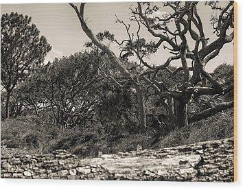 Island Trees Wood Print