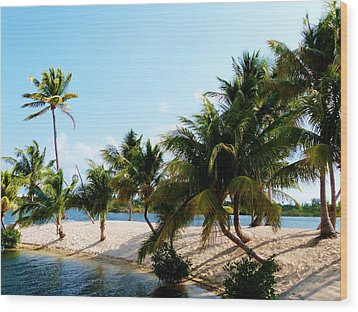 Wood Print featuring the photograph Isle @ Camana Bay by Amar Sheow
