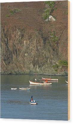 Isle De Margarita Sa Wood Print by Gail Maloney