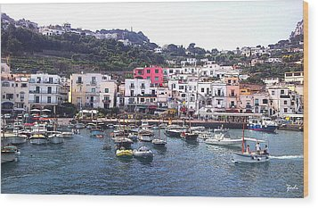 Wood Print featuring the photograph Isle Of Capri by Ze  Di