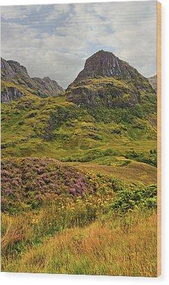 Isle Of Skye Wood Print by Marcia Colelli
