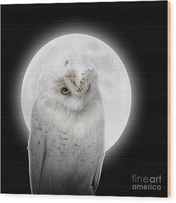 Isolated White Owl In Night With Moon Wood Print by Angela Waye