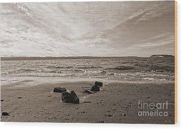 Isolation Wood Print by Arlene Sundby
