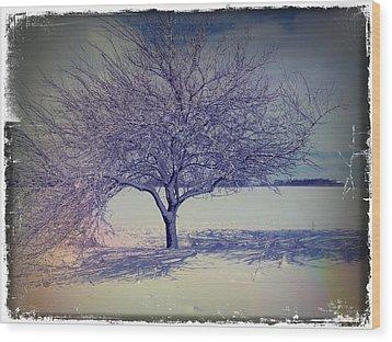 It Might Be An Apple Tree Wood Print
