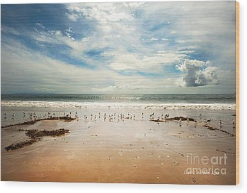 It Was A Sunny Day At The Beach From The Book My Ocean Wood Print by Artist and Photographer Laura Wrede