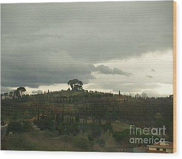 Wood Print featuring the photograph Italian Hillside by Robin Maria Pedrero