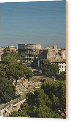 Wood Print featuring the photograph Italian Landscape With The Colosseum Rome Italy  by Marianne Campolongo