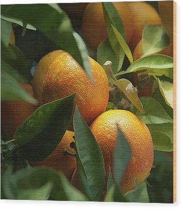 Wood Print featuring the photograph Italian Oranges by Michael Flood