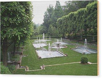 Italian Water Garden Wood Print by Barbara McDevitt