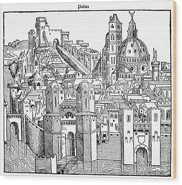 Italy - Padua 1493 Wood Print by Granger