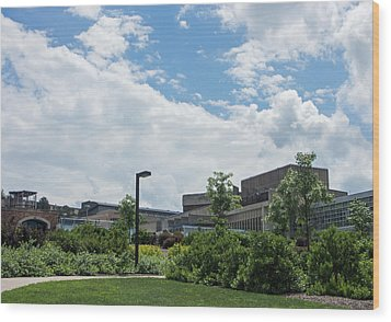 Ithaca College Campus Wood Print