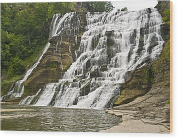 Ithaca Falls Wood Print by Anthony Sacco