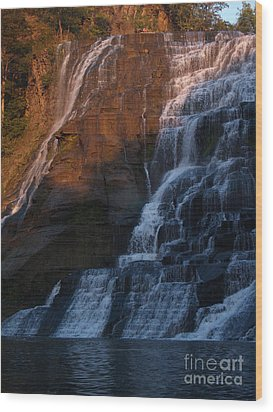 Ithaca Falls In Autumn Wood Print by Anna Lisa Yoder