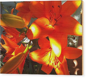 It's A Beautiful Day Lily Wood Print by Stephanie Aarons