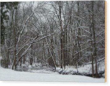 Its A Beautiful Winter Wood Print by Kay Novy