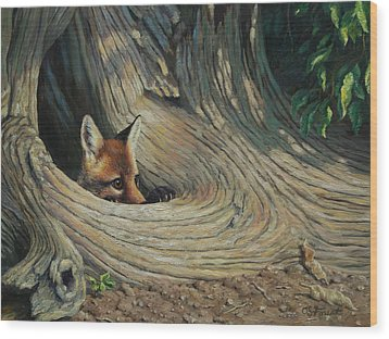 Fox - It's A Big World Out There Wood Print by Crista Forest