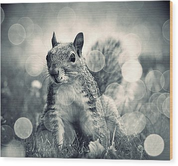 It's A Squirrel's World Too Wood Print