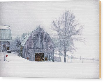 It's Cold Outside Wood Print by Mary Timman